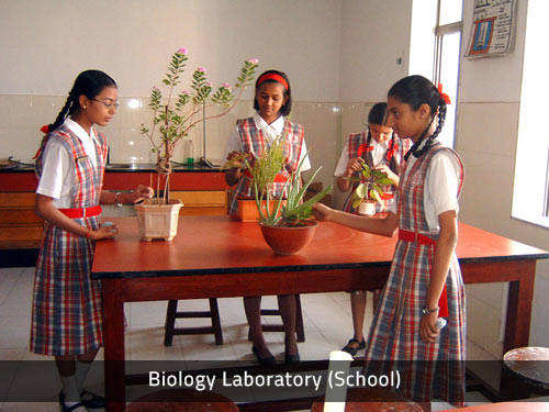 Biology Laboratory (School)